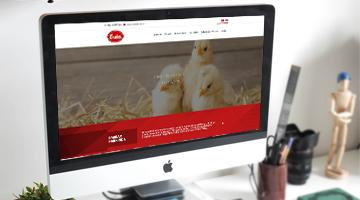 Yeni Web Sitemiz Yayında || Barkar Veteriner Ecza Deposu - Kanatlı Veteriner Sağlık Hizmetleri